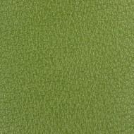 Vert Prairie